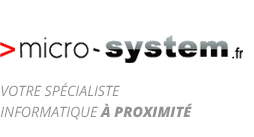 Micro System
